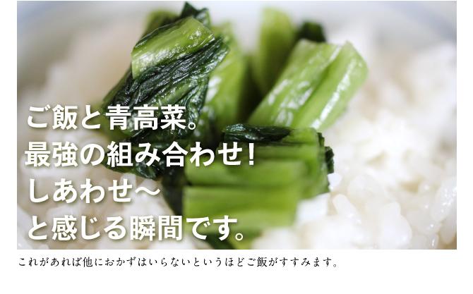 ご飯と青高菜。最強の組み合わせ!