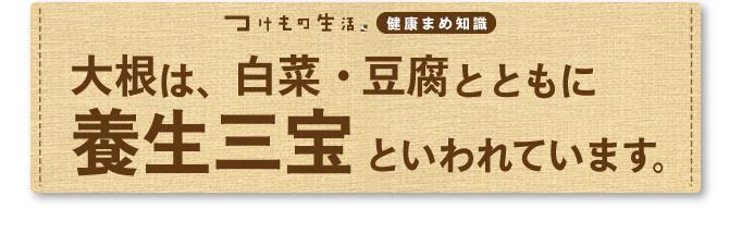 大根・白菜・豆腐は養生三宝