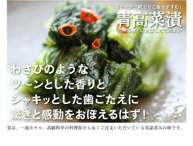 九州の名産 青高菜漬 お土産