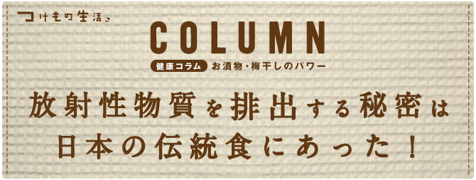 放射性物質をデトックス秘密は日本の伝統食にあった!