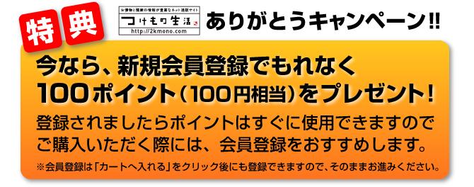 新規会員登録で100ポイントプレゼントありがとうキャンペーン