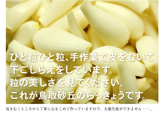 歯ざわりがいい!鳥取砂丘のらっきょうを使った手づくり無添加の「らっきょう甘酢漬」【300g】