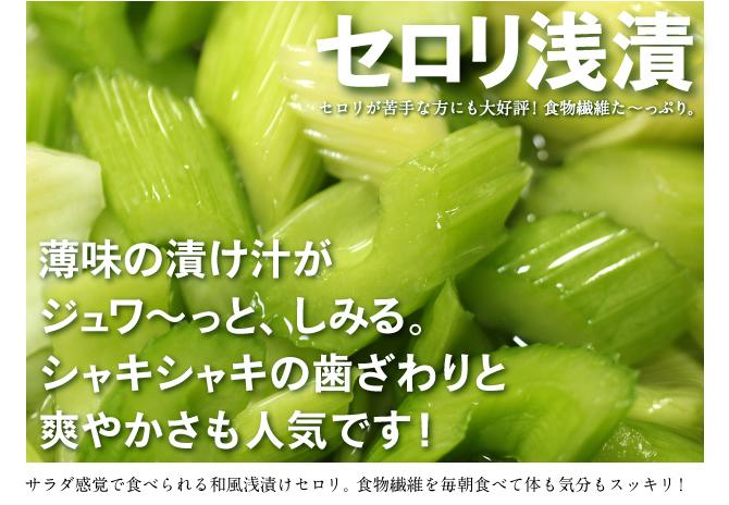セロリ 浅漬 食物繊維 さっぱり サラダ 漬物 通販